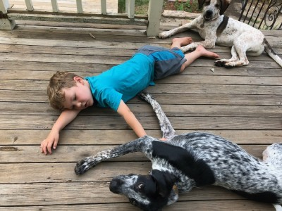 Lijah lying on the porch floor with the dogs