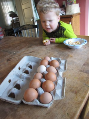 Lijah looking thoughtfully at the full egg carton