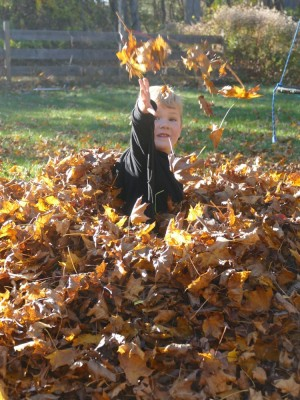 Lijah in a leaf pile tossing up some leaves