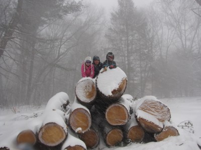 Harvey, Jack, and Megan atop a stack of logs in the driving snow