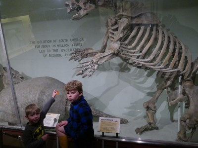 Zion pointing at a giant skeleton at the Harvard Natural History Museum