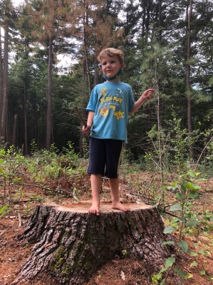 Elijah standing on a stump