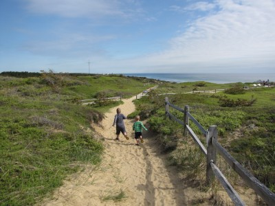 Harvey and Zion running down a path through the dunes