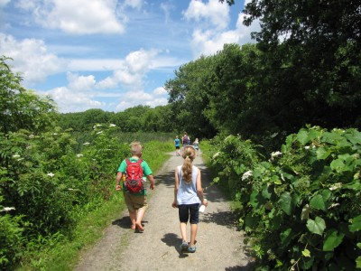 kids hiking on a sunny path through the marsh