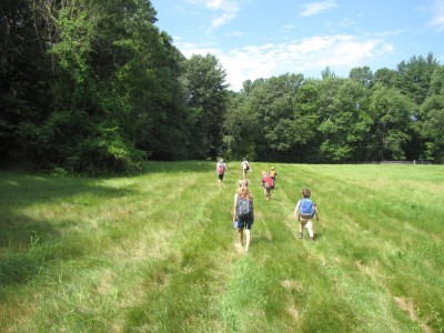 kids walking through a meadow