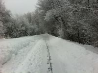 the snowy bike path again