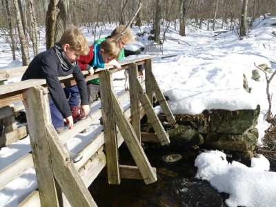 the boys looking over the railing of a bridge at Nashoba Brook