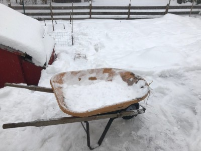the wheelbarrow on the snowy deck