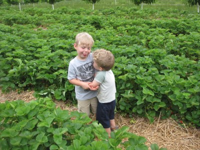 Zion and Lijah being silly in the strawberry field