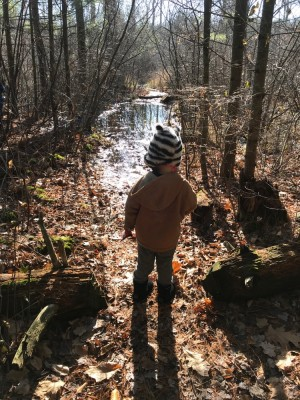 Lijah looking at a gigantic puddle blocking the trail in the woods