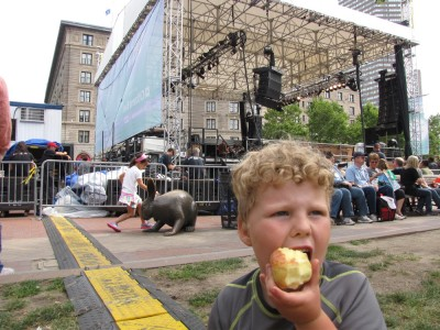 Harvey eating an apple in front of the Copley Arts Festival stage