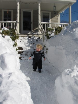 Harvey between giant snow piles on the front walk