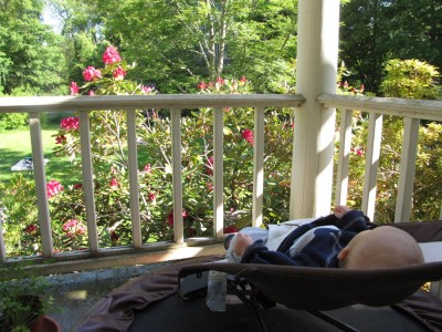 Elijah napping on the porch overlooking the rhododendron