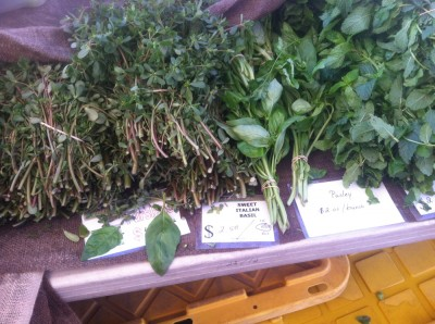 purslane for sale at the farmers market, on a table next to some basil and mint