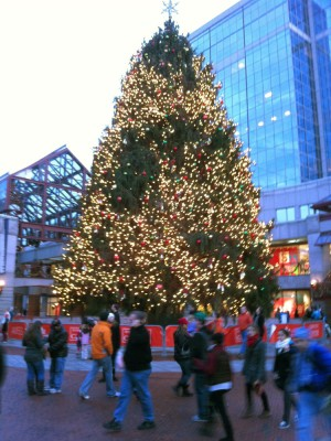 a gigantic Christmas tree at Quincy Market