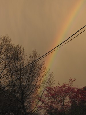 rainbow looking like it's touching down just a few streets away