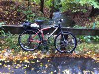 my bike and a full brook