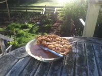 half a rhubarb pie on the back porch table, with the garden in the backround