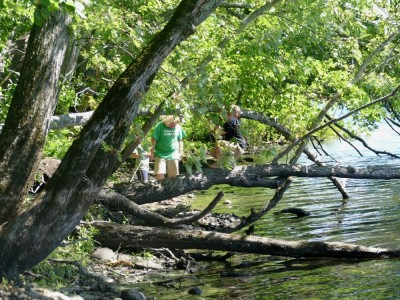 the boys playing in the trees along the shores of the Concord River