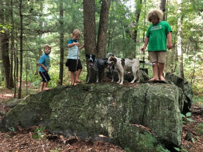 the boys and dogs atop a big rock in the woods