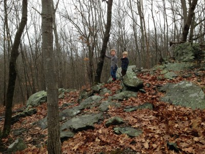 Harvey and Zion climbing on some rocky outcropping in the woods