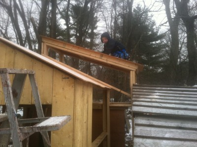 Zion on the roof of the in-progress playhouse