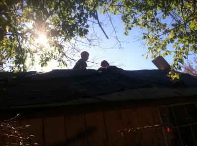 Harvey and Zion on the roof of the shed