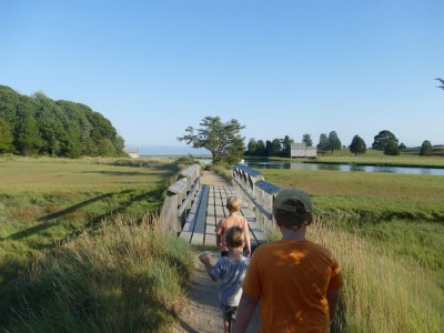 the boys walking on a bridge over salt marsh