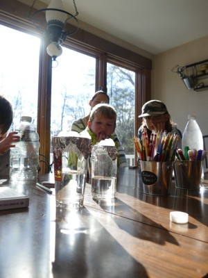 Lijah looking at a pair of experimental water-filled jars on a table