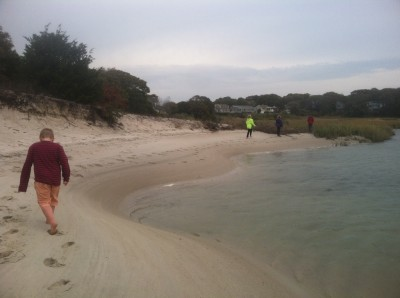 Harvey and friends walking on a secret beach