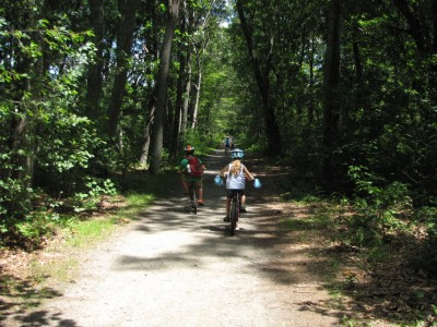 kids cycling on a shady dirt path