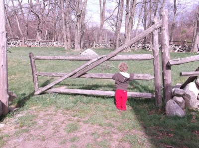 gate to the sheep pasture