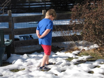 Harvey walking in the snow in shorts and sandals