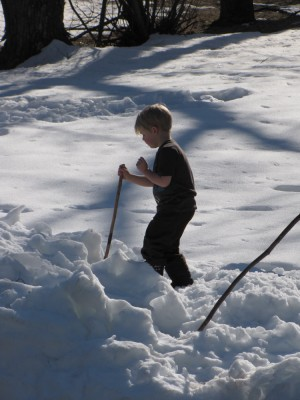short-sleeved Zion playing with a stick in the snow