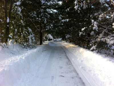 the snowy (but plowed!) bike path