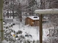 the shed and yard in the fast-falling snow