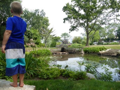 Zion looking at a beautifully landscaped pond