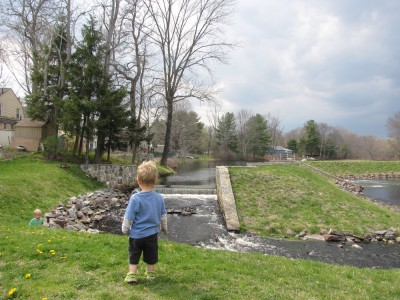 Lijah looking out over the pond and falls