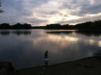 Harvey and Lijah by the shore of Spy Pond at sunset