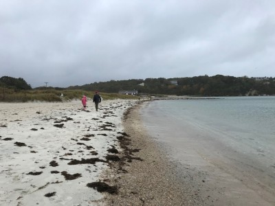 kids walking along the windblown beach