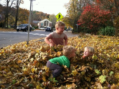 the three boys playing in a leaf pile on the sidewalk of a busy road