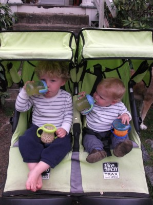 the boys in the stroller