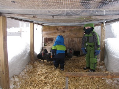 Harvey and Zion in the chicken run wearing snow suits