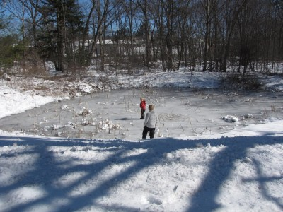 Zion and Harvey testing the ice on a little pond