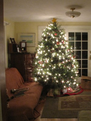 our Christmas tree, illuminated