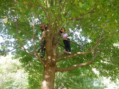 Elijah and Kamilah in a tree