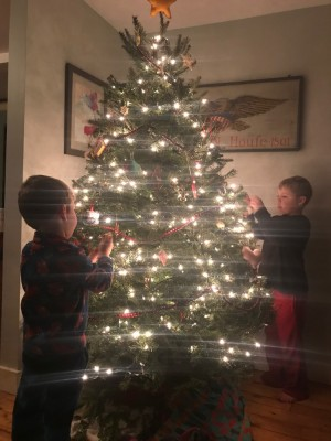 Zion and Lijah hanging ornaments
