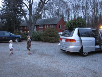 the boys watching the tree being tied onto the car
