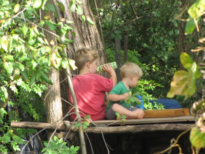 Harvey and Zion picnicking on their tree house platform