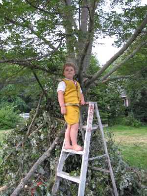 Harvey in arvey his king costume standing on top of a ladder by the tree fort